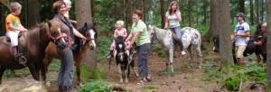paardrijden zomer in Kirchberg